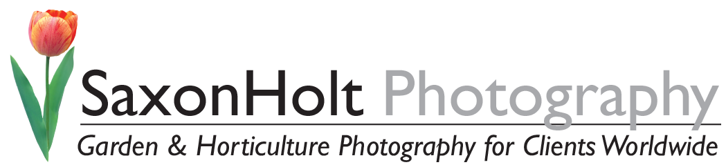 Saxon Holt Photography
