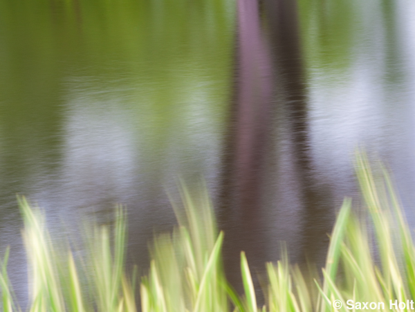 Blurred water reflection