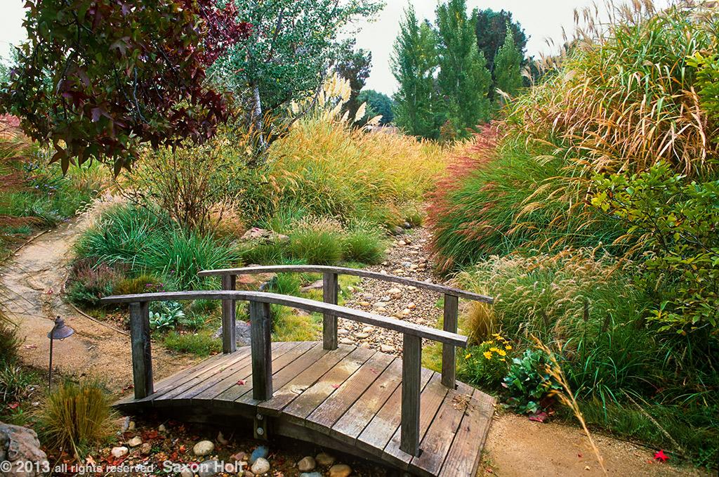 path through meadow garden