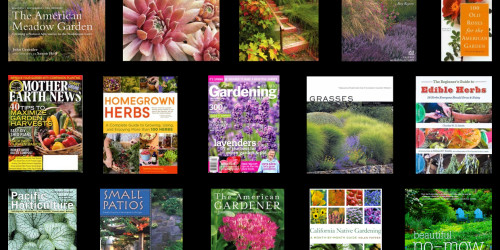 PhotoBotanic.com – Self-Publishing Experiment