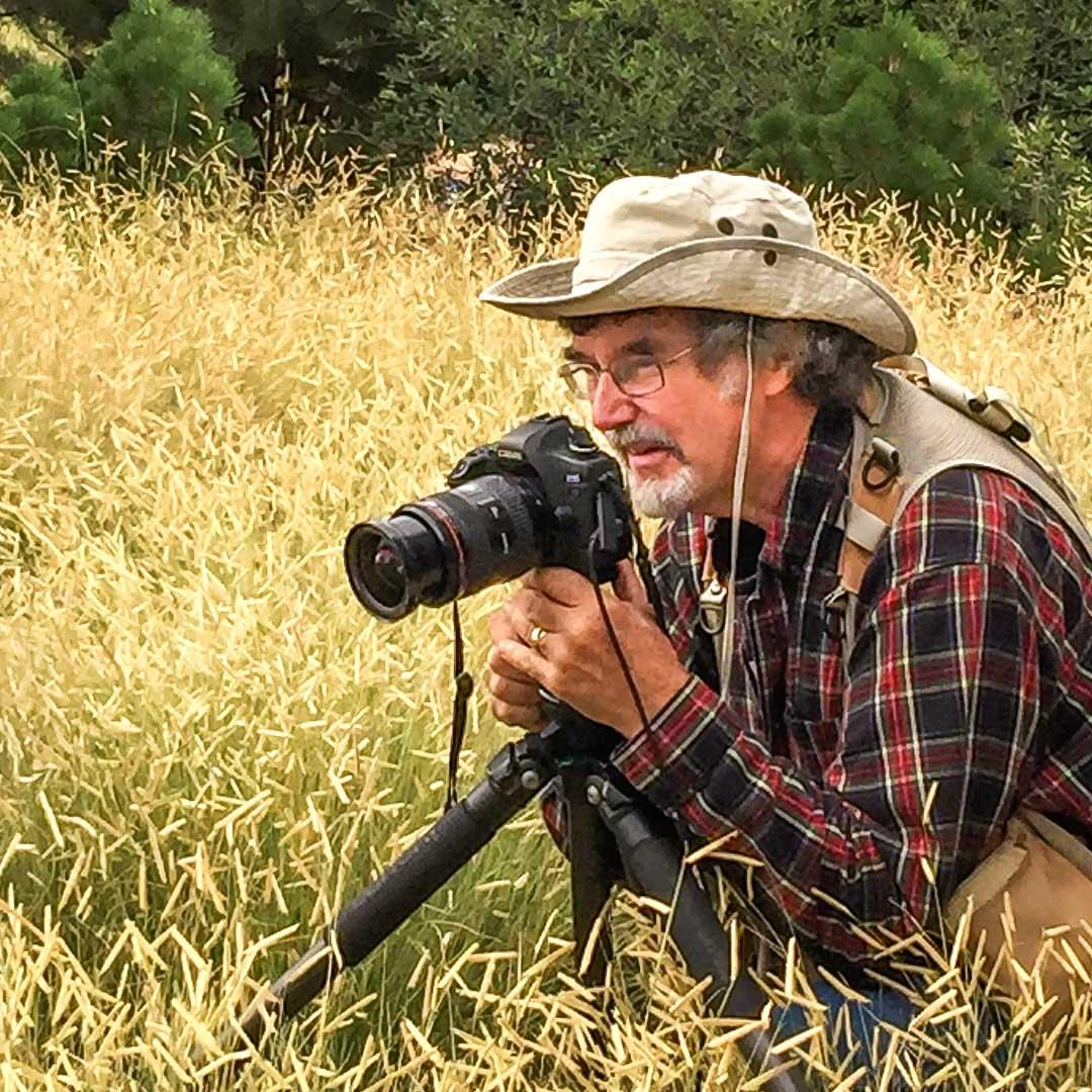 Saxon Holt, photographer working in garden with Blond Ambition